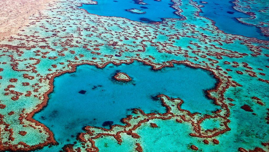Gebetnout bijoux fantaisie lyon mode tendance bijouterie femme Oullins artisan barrière corail australienne